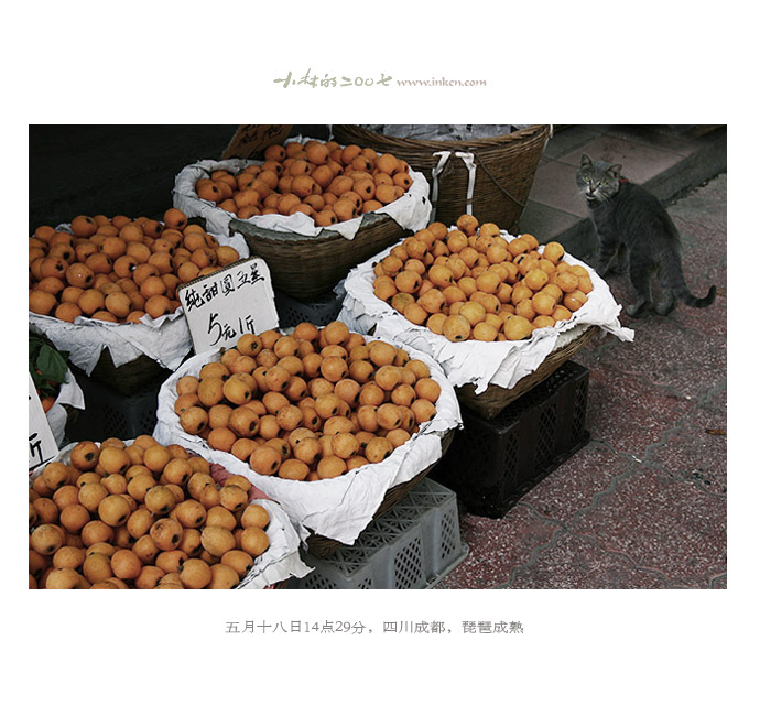 【望断天涯路】mdash;小林2007年摄影总结 - 小林 - 数码生存