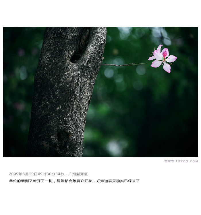 此去远方:小林2009摄影总结 - 小林 - 数码生存